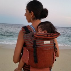 Indajani Evolution ergonomic carrier - Beenda Wood