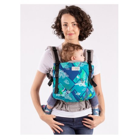 Isara ergonomic carrier The Trendsetter Mountains Dream